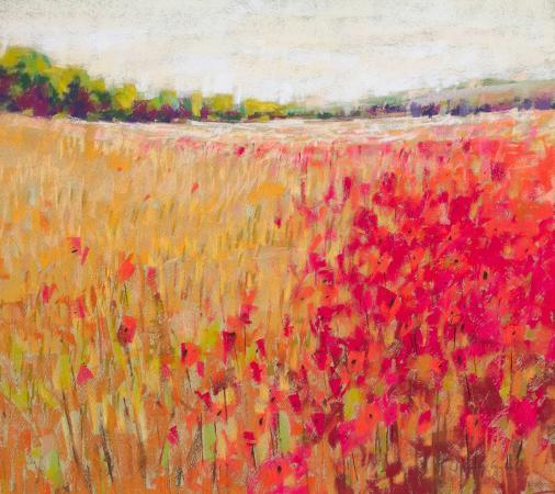 poppies-evening-light-v