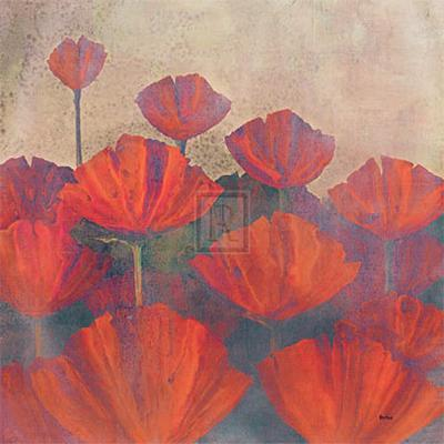 Poppies II-Robert Holman-Art Print
