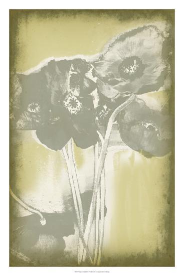 Poppies in Relief II-Jennifer Goldberger-Premium Giclee Print