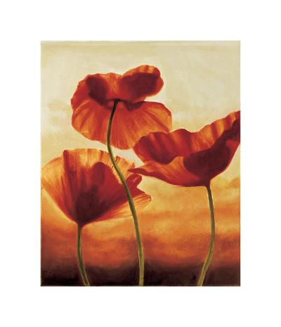 Poppies in Sunlight II-Andrea Kahn-Giclee Print