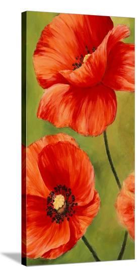 Poppies in the wind I-Luca Villa-Stretched Canvas Print