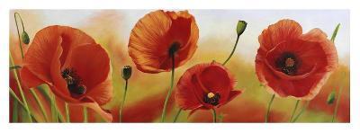 Poppies in the wind-Luca Villa-Art Print