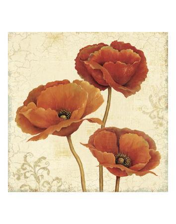 https://imgc.artprintimages.com/img/print/poppy-bouquet-ii_u-l-f8chc10.jpg?p=0