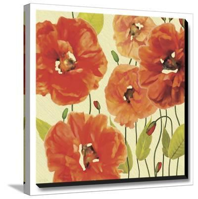 Poppy Express I-Jocelyne Anderson-Stretched Canvas Print