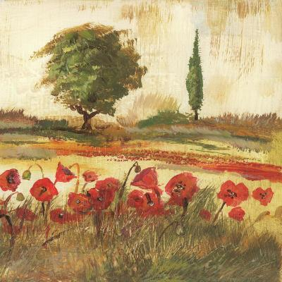 Poppy Field III-Gregory Gorham-Art Print