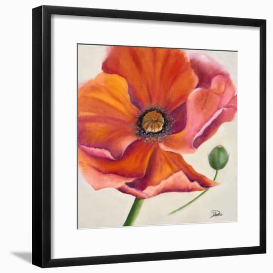 Poppy Flower II-Patricia Pinto-Framed Premium Giclee Print