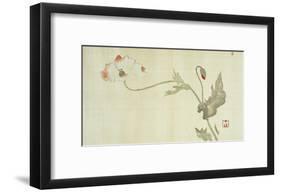 Poppy from Primrose, Mount Fuji, Bamboo and Toy Bird, Kanzan and Jittoku, Cuckoo under the Moon,…-Sakai Hoitsu-Framed Giclee Print