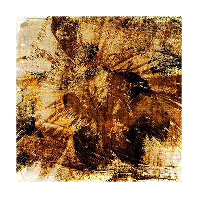 https://imgc.artprintimages.com/img/print/poppy-gold-ii_u-l-q1aowbe0.jpg?p=0
