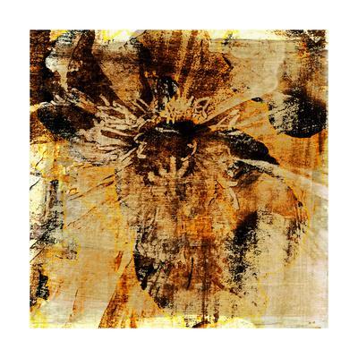 https://imgc.artprintimages.com/img/print/poppy-gold-iii_u-l-q1aowy70.jpg?p=0