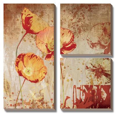 Poppy Heart II-Tandi Venter-Canvas Art Set