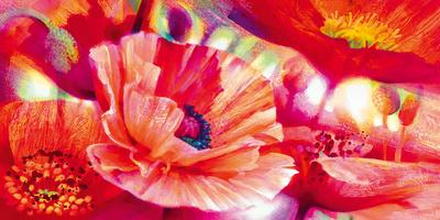 https://imgc.artprintimages.com/img/print/poppy-homage_u-l-f5jr0j0.jpg?p=0