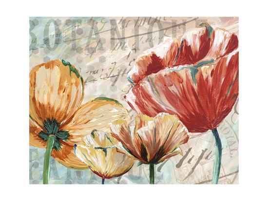 Poppy Layers II-Redstreake-Art Print