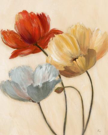 https://imgc.artprintimages.com/img/print/poppy-palette-ii_u-l-f4ehwf0.jpg?p=0