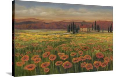 Poppy Path To Home--Stretched Canvas Print