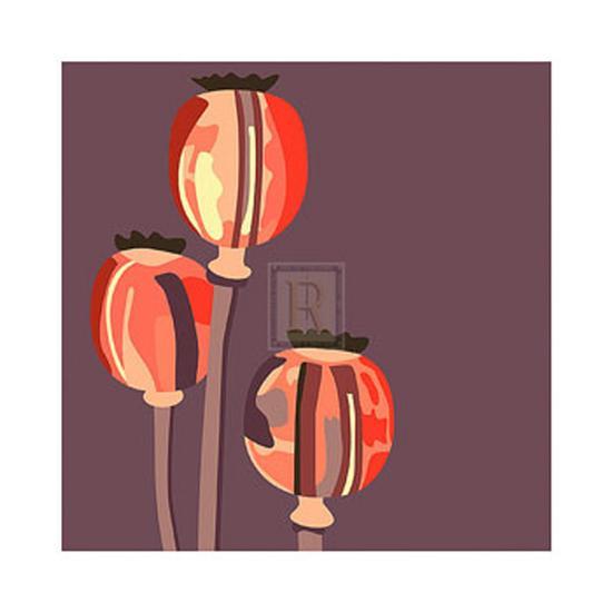 Poppy Pods-Emily Burrowes-Art Print
