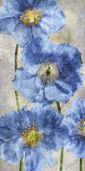 Poppy Splendour II-Tania Bello-Giclee Print