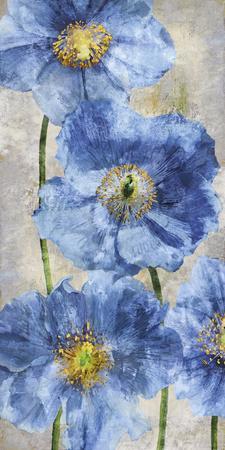 https://imgc.artprintimages.com/img/print/poppy-splendour-ii_u-l-f7v03i0.jpg?p=0