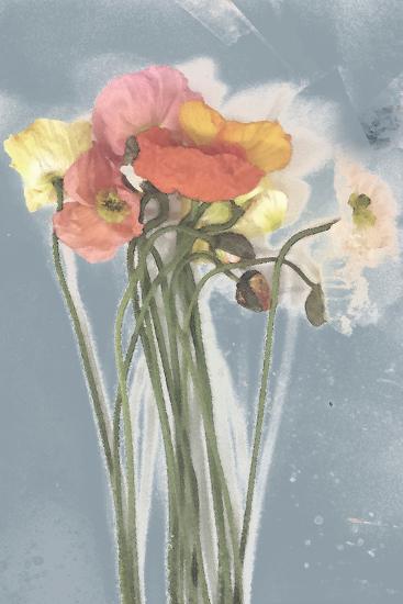 Poppy Spray III-Jennifer Goldberger-Art Print