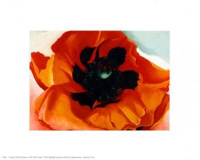 https://imgc.artprintimages.com/img/print/poppy_u-l-e6mhw0.jpg?p=0