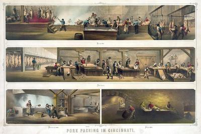 Pork Packing in Cincinnati--Giclee Print