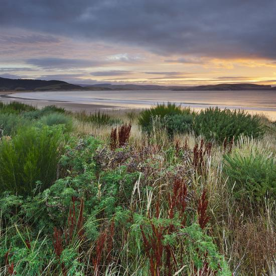 Porpoise Bay, Catlins, Southland, South Island, New Zealand-Rainer Mirau-Photographic Print