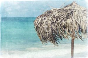 Palapa by Port 106 Project