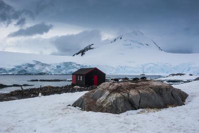 Port Lockroy Research Station, Antarctica, Polar Regions-Michael Runkel-Photographic Print