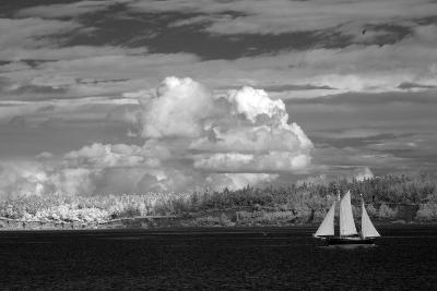 Port Townsend Sailboat I-George Johnson-Photographic Print