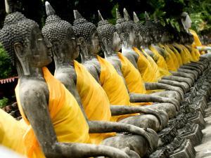 Buddha Statues, Ayuthaya, Thailand, Southeast Asia by Porteous Rod