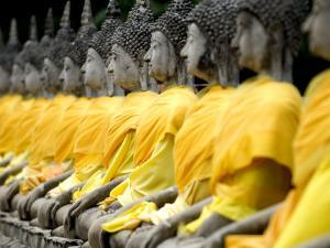 Buddha Statues, Ayuthaya, Thailand, Southeast Asia by Porteous Rod