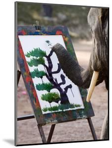 Elephant Painting, Chiang Mai, Thailand, Southeast Asia by Porteous Rod