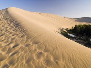 Sand Dunes and Oasis, Desert, Dunhuang, Gansu, China by Porteous Rod
