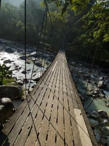Wooden Bridge over River, Ranong, Thailand, Southeast Asia by Porteous Rod