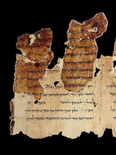 Portion of the Temple Scroll, Dead Sea Scrolls, Qumran--Giclee Print