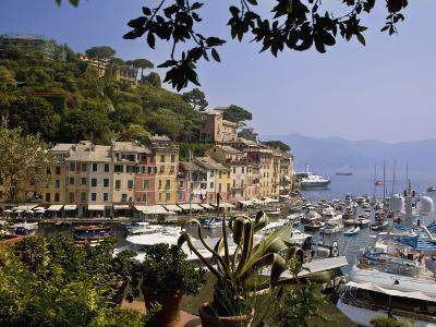 Portofino, Liguria, Italy, Europe-Angelo Cavalli-Photographic Print