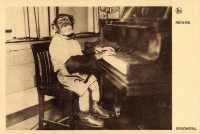 Portrait Eines Schimpansen, Der Klavier Spielt--Giclee Print