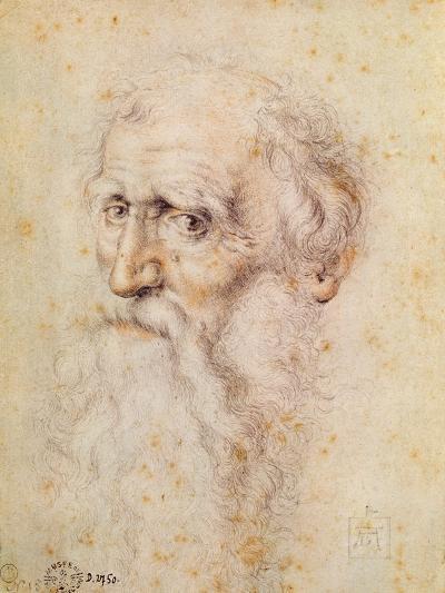 Portrait of a Bearded Old Man-Albrecht D?rer-Giclee Print