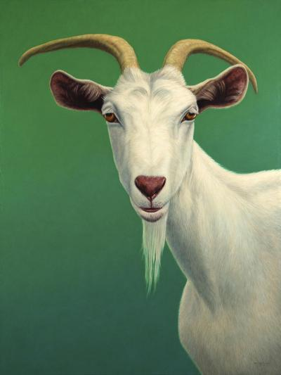 Portrait of a Goat-James W. Johnson-Giclee Print