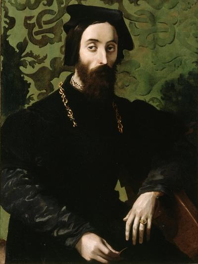 Portrait of a Musician, C.1540-Girolamo Mazzola Bedoli-Giclee Print