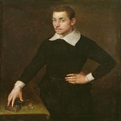Portrait of a Young Florentine Goldsmith-Agnolo Bronzino-Giclee Print