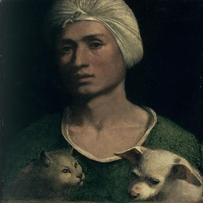 Portrait of a Young Man with a Dog and a Cat-Dosso Dossi-Giclee Print