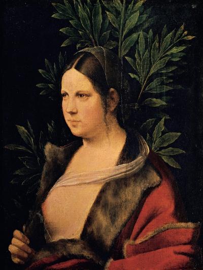 Portrait of a Young Woman (Laura)-Giorgione da Castelfranco-Giclee Print
