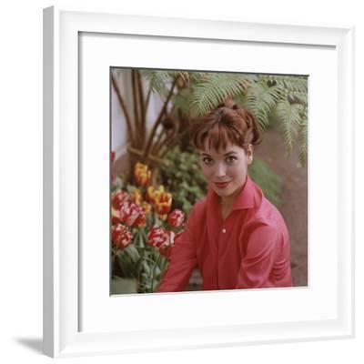 Portrait of Actress Elsa Martinelli-Ralph Crane-Framed Premium Photographic Print