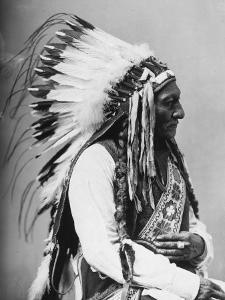 Portrait of an American Indian Chief