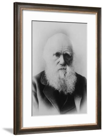 Portrait of Charles Darwin--Framed Art Print