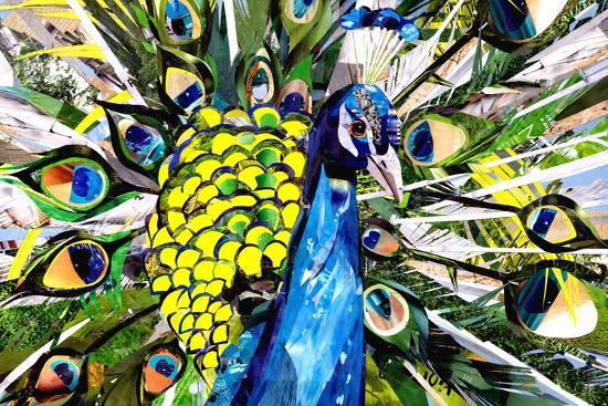 Portrait of Colorful Peacock-Sarah Jackson-Art Print