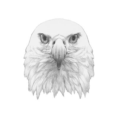Portrait of Eagle. Hand Drawn Illustration.-victoria_novak-Art Print