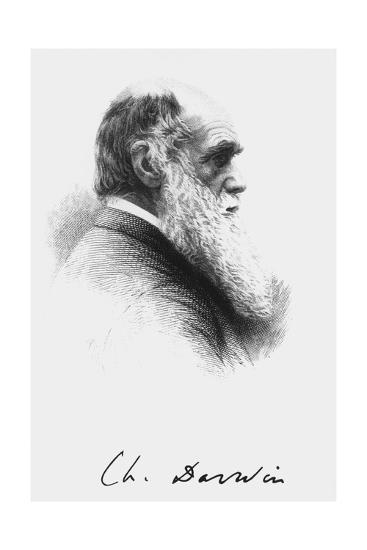 Portrait of English Naturalist Charles Darwin-Science Photo Library-Giclee Print