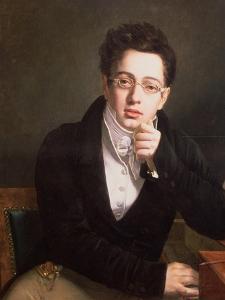 Portrait of Franz Schubert (1797-1828), Austrian Composer, Aged 17, circa 1814