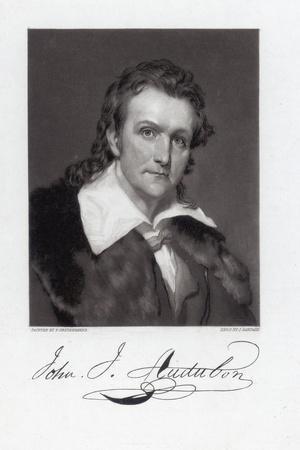 https://imgc.artprintimages.com/img/print/portrait-of-john-james-audubon_u-l-pnxayv0.jpg?p=0
